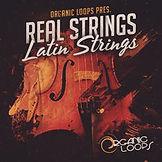 RS_LatinStrings.jpg