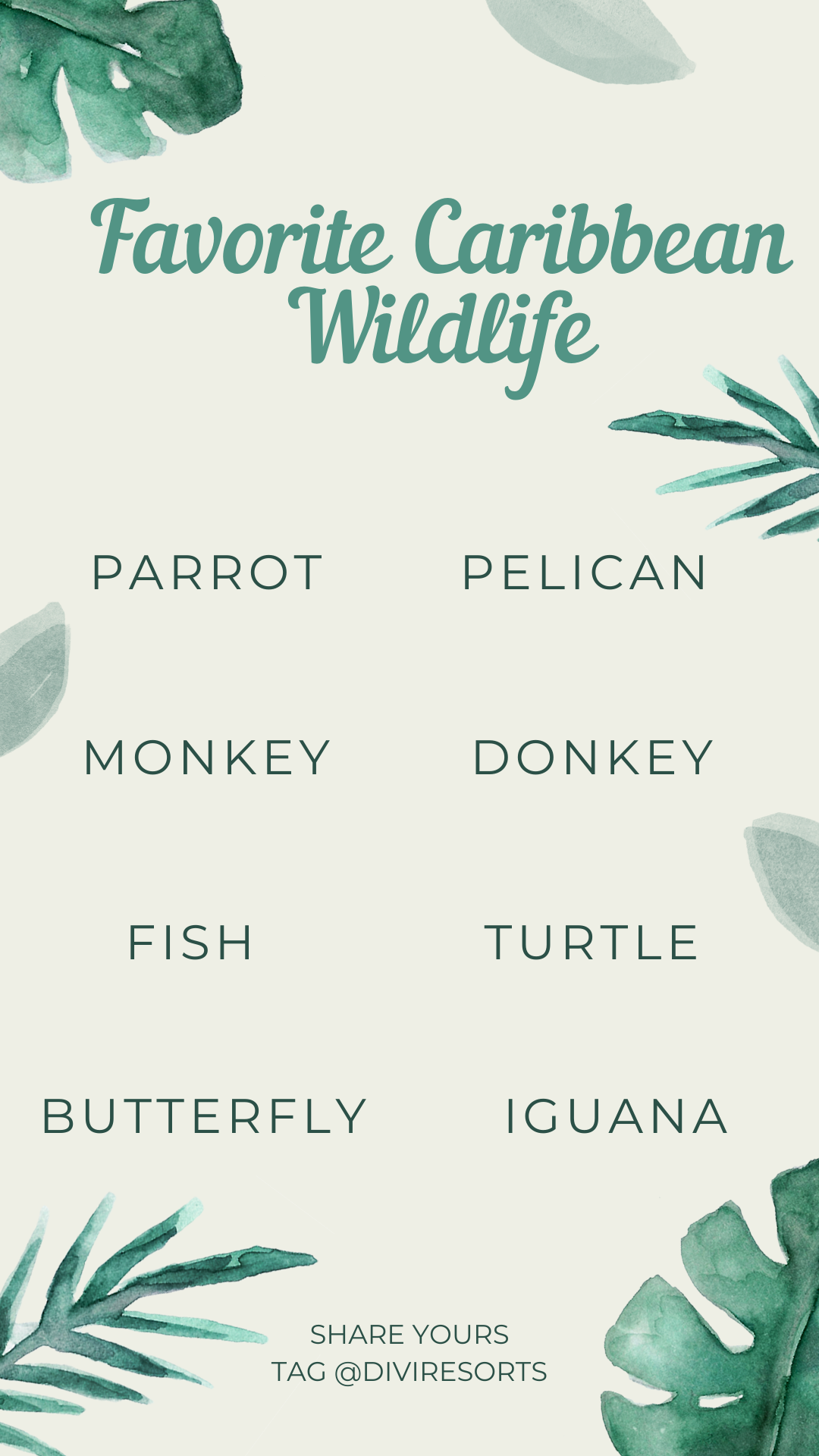 Favorite Caribbean Wildlife