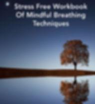 Stress Free Workbook  cover.jpg