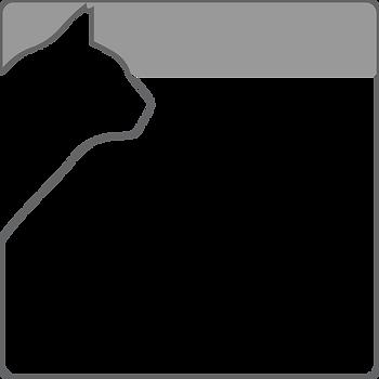 תוכנית חתולים