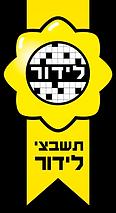 לוגו לידור תשבצים