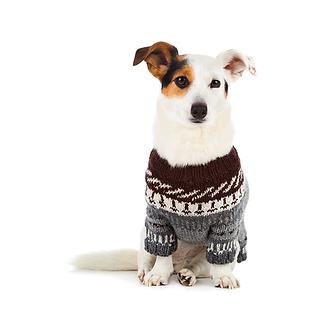 מה בא לך, רקסי - שכמיה או סוודר?