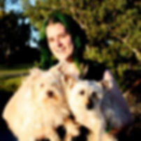 Paws in the Park, Perth's Pack Dog Walking Specialists