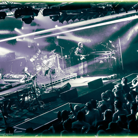 Disco Biscuits 12.27.14