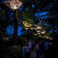 2019 China Lights