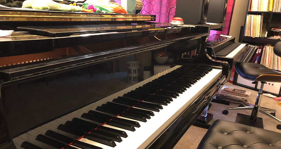Melanie Brsan Piano Studio | Suzuki piano teacher providing piano lessons in the Shorewood, Joliet, Plainfield Illinois areas.