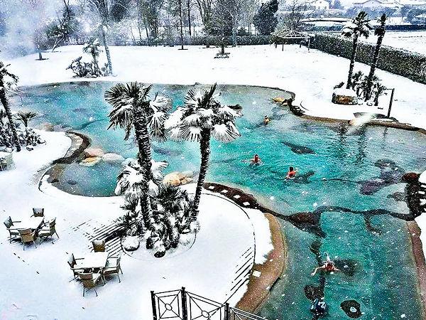 winterwonderland-biodesign.jpg