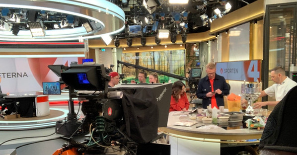 Mike on TV4 morning show