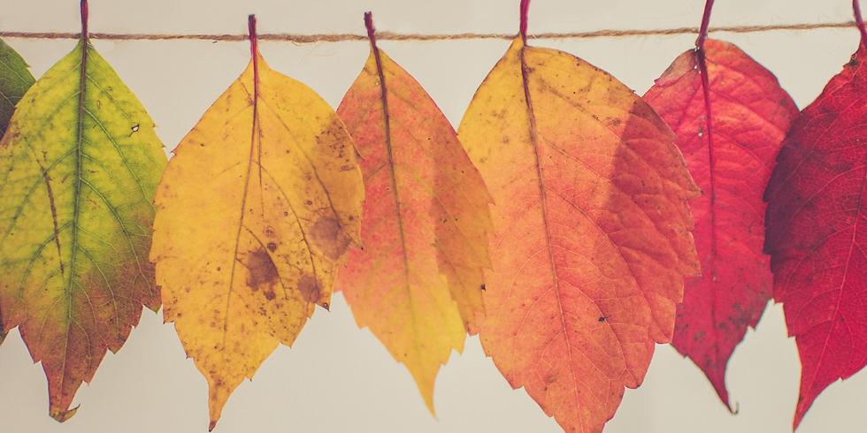 Fall Schedule Kicks Off