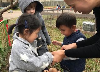 Eco-friendly, Organic, Sustainability—우리 아이들을 위한 선물
