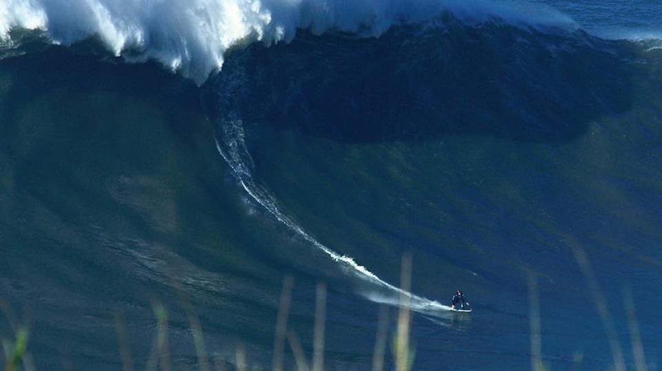 Cotty Big Wave.jpg