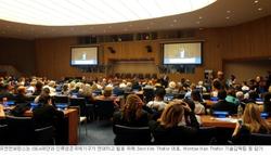 UN ECOSOC SCS ISEA