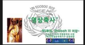 UN ECOSOC SCS ISEA.