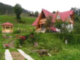 Casa Ileana - large