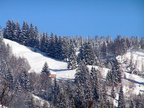 Fundu Moldovei