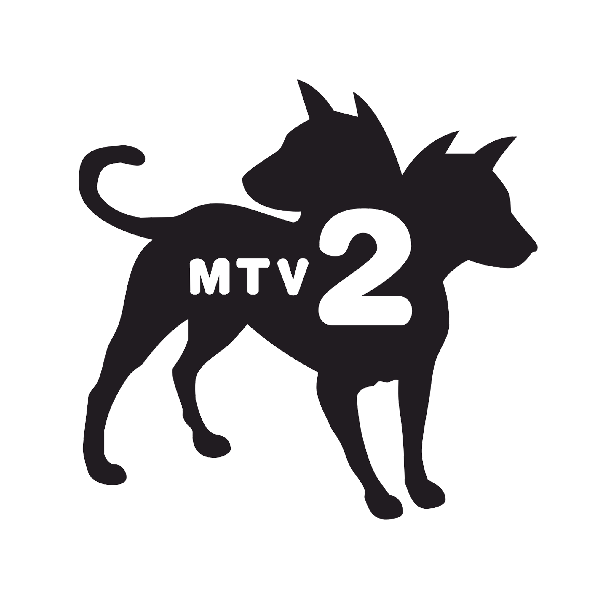 client_mtv2_color