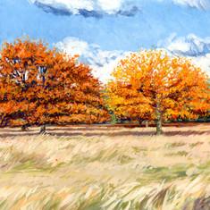Two Autumn Trees