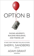 Option B.png