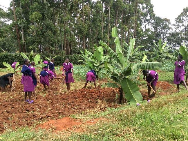 Learning farm work.