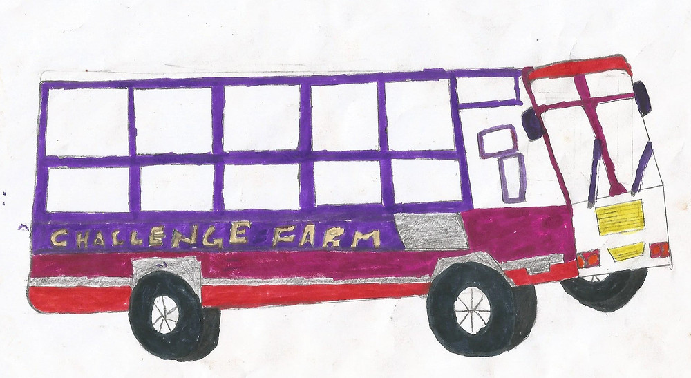 Drawn by one of the children at Challenge Farm!