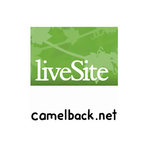 Camelback Web Architects