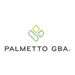 Palmetto GBA