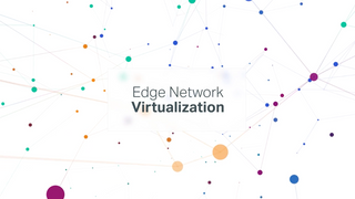 Edge Network Virtualization