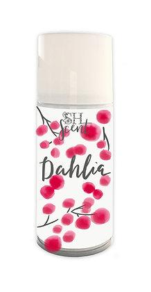 Dahlia   Luxury Range