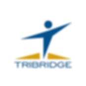 Tribridge