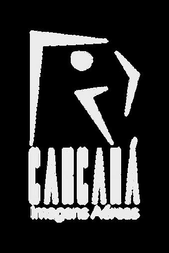 Logo V Branca.png