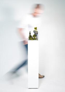 Mouvance ou The Ascent, 2019