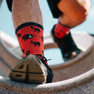 Mozeu Socks - Crimson Socks