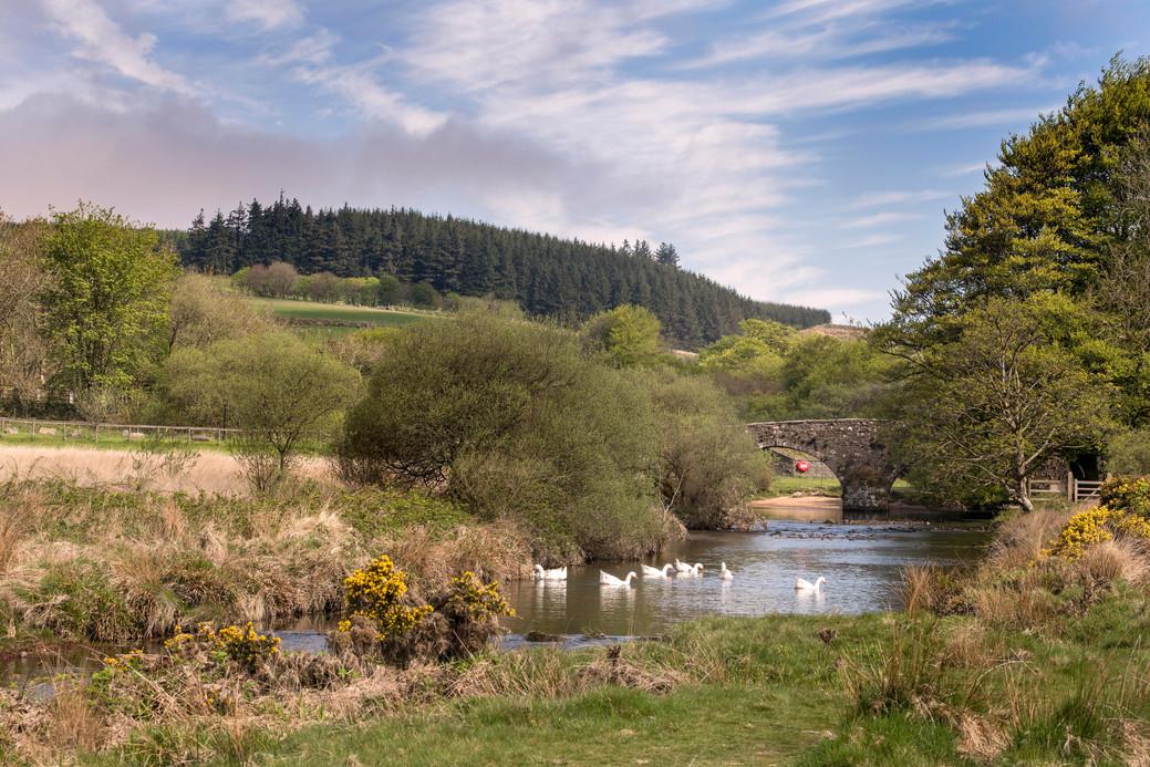 Dartmoor in the summer.