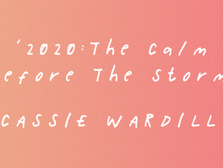 '2020: The Calm Before the Storm': An Illustration by Cassie Wardill