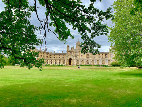 University in a Post COVID age