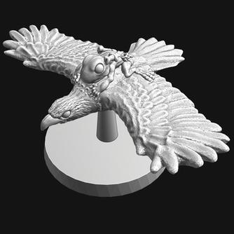 Grung riding a eagle