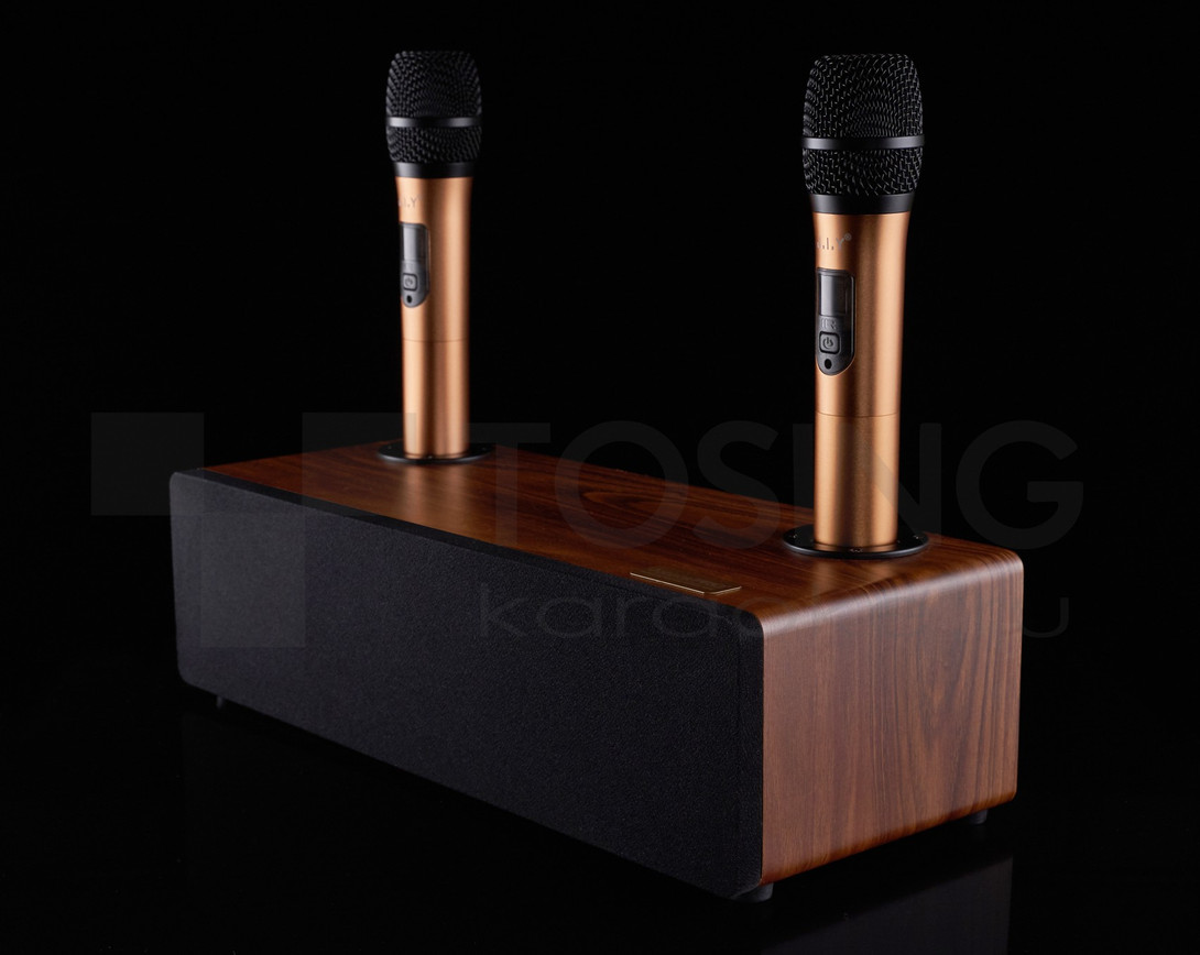 Караоке система для дома с колонкой и микрофонами