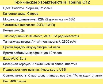 Tехнические характеристики Tosing Q12.jp