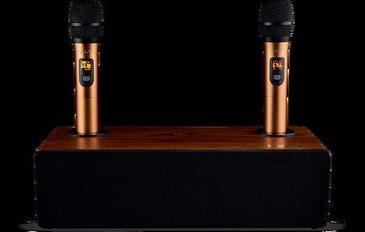Колонка с двумя микрофонами для караоке