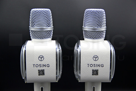 Вид на логотип Tosing.jpg