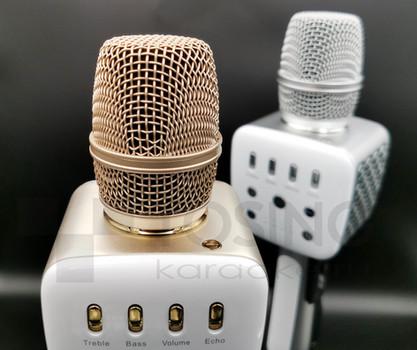 Ближний план на микрофон.jpg