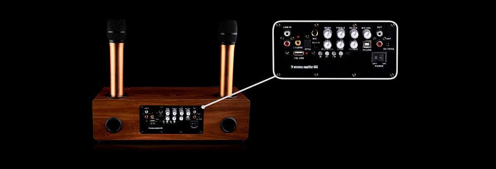 Колонка для караоке с микрофонами