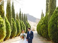 near by las vegas destination wedding ve