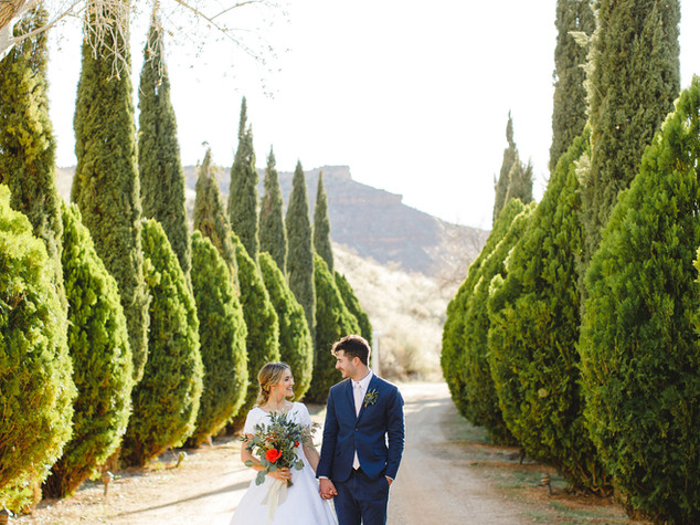 near by las vegas destination wedding ve