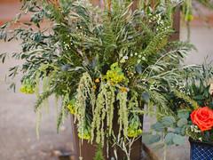 southern utah floral design.JPG