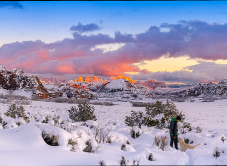 Top 10 Reason to visit Zion National Park during the winter off-season is a great idea