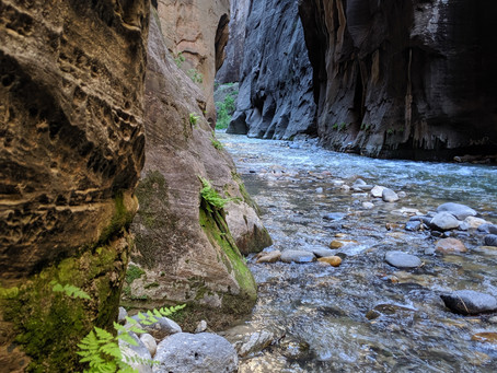Top 5 hikes in Zion (some not as well known)