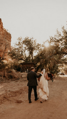 getting married in zion.png