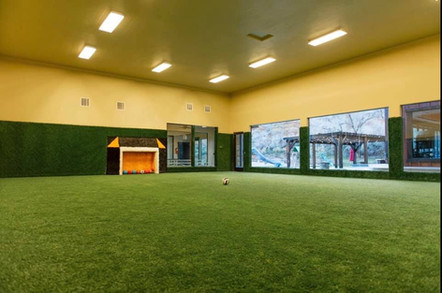 indoor soccer field mansion home near zi