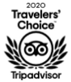 Travelers Choice Award.png